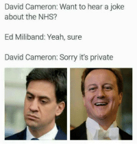 David Cameron, Memes, and Sorry: David Cameron: Want to hear a joke  about the NHS?  Ed Miliband: Yeah, sure  David Cameron: Sorry it's private