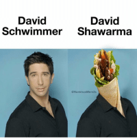 David Schwimmer, Meme, and Girl Memes: David  David  Schwimmer Shawarma  @HummusMem3s NOW THIS IS A QUALITY MEME (@hummusmem3s)