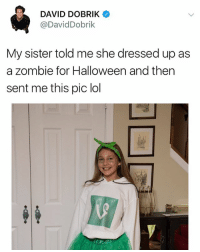 Halloween, Lol, and Zombie: DAVID DOBRIK  @DavidDobrik  My sister told me she dressed up as  a zombie for Halloween and then  sent me this pic lol :(
