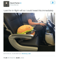 Respect, Thank You, and Flight: David Farrier  @davidfarrier  i paid for in-flight wifi so i could tweet this immediately  2016-06-23, 10:28 AM from Winthrop, MA  17.2K RETWEETS 29.9K LIKES Thank you, dedicated interneter. People like you are what keep society running smoothly. #respect