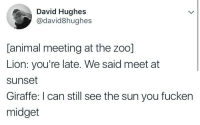 Animal, Giraffe, and Lion: David Hughes  @david8hughes  [animal meeting at the zoo]  Lion: you're late. We said meet at  sunset  Giraffe: I can still see the sun you fucker  midget What sound do giraffes make?