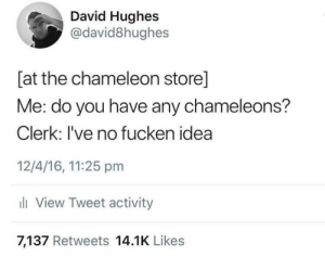 Chameleon, Idea, and Tweet: David Hughes  @david8hughes  [at the chameleon store]  Me: do you have any chameleons?  Clerk: l've no fucken idea  12/4/16, 11:25 pm  li View Tweet activity  7,137 Retweets 14.1K Likes