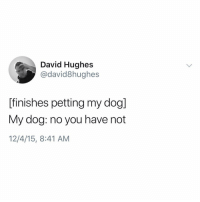 Memes, 🤖, and Dog: David Hughes  @david8hughes  [finishes petting my dog]  My dog: no you have not  12/4/15, 8:41 AM let me tell you what @david8hughes