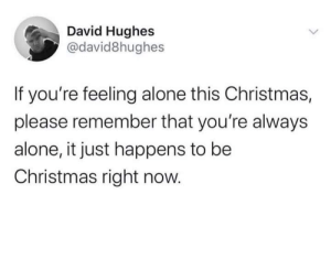 meirl: David Hughes  @david8hughes  If you're feeling alone this Christmas,  please remember that you're always  alone, it just happens to be  Christmas right now. meirl