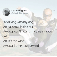 Be Like, Inside Out, and Memes: David Hughes  @david8hughes  [skydiving with my dog]  Me: ur ears r inside out  My dog: can't hear u my ears r inside  out  Me: it's the wind  My dog: I think it's the wind it be like that @david8hughes