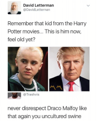 Harry Potter, Movies, and Dank Memes: David Lettermarn  @DavidLetternan  Remember that kid from the Harry  Potter movies... This is him now,  feel old yet?  @Trashvis  never disrespect Draco Malfoy like  that again you uncultured swine 😂😂😂