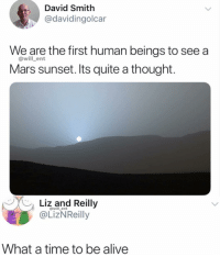 Alive, Memes, and Mars: David Smith  @davidingolcar  We are the first human beings to see a  Mars sunset. Its quite a thought.  @will_ent  Liz and Reilly  @LizNReilly  @will _ent  What a time to be alive Amazing
