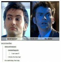 totally looks like: david tennant  TotallyLooksLike com  Larryrickardian:  deducethestars:  adasfa  ots  i can see it  l think it's the hair  It's definitely the hair.  the doctor