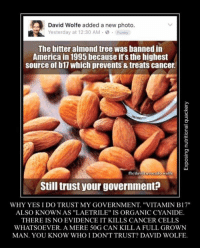 "Memes, Avocado, and Wolf: David Wolfe added a new photo.  Yesterday at 12:30 AM .0  Funny  The bitter almond tree was banned in  America in 1995 because its the highest  source of b11 Which prevents&treats cancer.  fb/david avocado Wolfe  Still trust your government?  WHY YES I DO TRUST MY GOVERNMENT. ""VITAMIN B17""  ALSO KNOWN AS ""LAETRILE"" IS ORGANICCYANIDE.  THERE IS NO EVIDENCE IT KILLS CANCER CELLS  WHATSOEVER. A MERE 50G CAN KILLA FULL GROWN  MAN. YOU KNOW WHO I DON'T TRUST? DAVID WOLFE. ‪I don't trust anyone who spreads nonsense like this.‬  Exposing nutritional quackery"