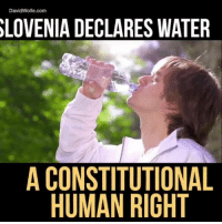 Memes, Constitution, and Wolf: David Wolfe.com  SLOVENIA DECLARES WATER  A CONSTITUTIONAL  HUMAN RIGHT We can do this in America and worldwide. Please boycott Nestlé