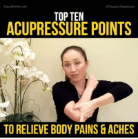 Memes, Wolf, and 🤖: David Wolfe.com  Yasuko Kawamura  TOP TEN  ACUPRESSURE POINTS  VN  TO RELIEVE BODY PAINS & ACHES Top 10 Acupressure Points To Relieve Body Pains & Aches