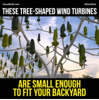 Memes, 🤖, and Wind: DavidWolfe.com  New Wind  THESE TREE SHAPED WIND TURBINES  ARE SMALL ENOUGH  TO FIT YOUR BACKYARD