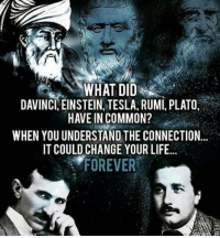 davinci: DAVINCI, EINSTEIN, TESLA, RUMI, PLATO,  HAVE IN COMMON?  WHEN YOUUNDERSTAND THE CONNECTION  IT COULD CHANGE YOUR LIFE...  FOREVER