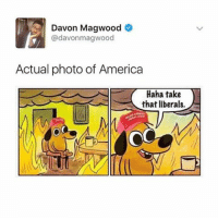 I'm tired: Davon Magwood  @davonmagwood  Actual photo of America  Haha take  that liberals. I'm tired