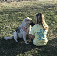 Memes, Mother's Day, and Run: DAW Thanks @hannahhh.223 for the support in our sunny days shirt! Unfortunately this shirt is now discontinued! If you see a particular style you like make sure you get before we run out! We will not be re-adding styles once they run out so get your favorite soon! Order at PawzShop.com FREE shipping buy 1 get 1 half off ! (Mother's Day is just around the corner 🐾🐶)