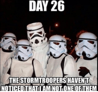LMAO 🤣 starwars battlefront rogueone stormtrooper darkside darthvader memes lol gamer otaku ps4 xboxone pc instagram cosplay: DAY 26  THE STORMTROOPERS HAVENT  NOTICED THATI AM ONE OF LMAO 🤣 starwars battlefront rogueone stormtrooper darkside darthvader memes lol gamer otaku ps4 xboxone pc instagram cosplay