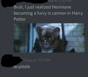 Bruh, Harry Potter, and Hermione: day at 75U  Bruh, I just realized Hermione  becoming a furry is cannon in Harry  Potter  Today at 7:51 PM  Bruhhhh Bruh moment