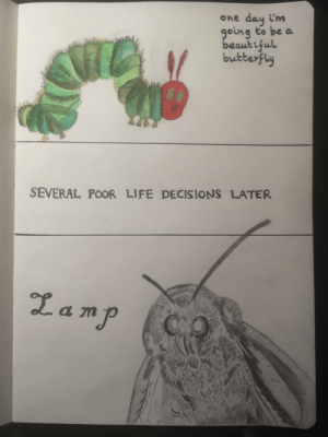 Decisions: day i'm  going to be a  beaut iful  butterfly  One  SEVERAL POOR LIFE DECISIONS LATER  Lamp  QO