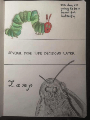 The sad life of a caterpillar: day im  going to be a  beautiful  butterfly  One  SEVERAL POOR LIFE DECISIONS LATER  Zamp  CO The sad life of a caterpillar