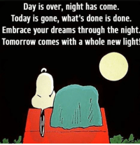 Memes, Today, and Tomorrow: Day is over, night has come.  Today is gone, what's done is done.  Embrace your dreams through the night.  Tomorrow comes with a whole new light!