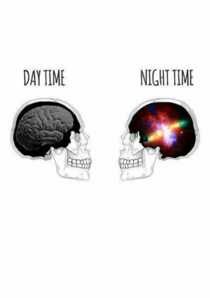 Time, Day, and  Night: DAY TIME  NIGHT TIME