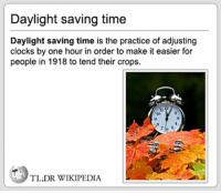 Daylight Savings: Daylight saving time  Daylight saving time is the practice of adjusting  clocks by one hour in order to make it easier for  people in 1918 to tend their crops.  9  TL:DR WIKIPEDIA