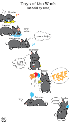 gostatisfy:  : Days of the Week  (as told by cats)  Monday  Tuesday  (T^TT)  owiee.-.  {Hump day  Wednesday  Thursday  ALMOST  THERE~  Friday  TGIF  Saturday  Sunday  so sleepy.. gostatisfy: