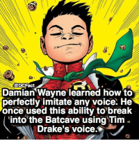 Memes, Break, and How To: @DCFact  Damian Wayne learned how to  perfectly imitate any voice. He  once used this ability to break  into the Batcave using Tim .  Drake's voice. Do you want to eventually see Damian on the big screen? 🙄