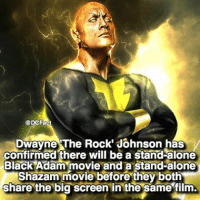 Being Alone, Memes, and Movies: DCFact  Dwayne The Rock Johnson has  confirmed there will be a stand-alone  Black Adam movie and a stand-alone  Shazam movie before they both  share the big screen in the same film. So happy that DC is finally taking a turn in the right direction and giving the characters more of a background story before just throwing them all together. I really have high hopes for DC movies in the upcoming years. What are your guy's takes on this? Comment below your opinion 🙂