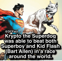 Fast doggy 😋: DCFact  Krypto the Superdog  was able to beat both  Superboy and Kid Flash  (Bart Allen) in'a race  around the world. Fast doggy 😋
