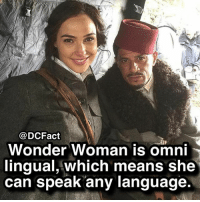Memes, Wonder Woman, and Wonder: @DCFact  Wonder Woman is omn  ingual, which means she  can speak any language Gal 😍