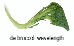 Chemistry Memes are cool and all but what about some Quantum Physics?: de broccoli wavelength Chemistry Memes are cool and all but what about some Quantum Physics?