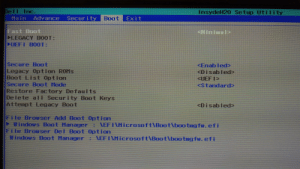 Boo, Windows, and Legacy: De II Inc.  InsydeH20 Setup Utility  Boot Exit  Adv ance  Security  Main  Fast Boot  CLEGACY BOOT:  CUEFI BO0T:  <Mininal>  Secure Boot  Legacy Option ROMS  Boot List Option  Secure Boot Mode  Restore F ac tory Defaults  De le te aI Security Boot Keys  Attempt Legacy Boot  <Enabled  <Disabled  <UEF IP  <standard  <Disab led  File Browser Add Boot Option  Windows Boot Marnager EF IAMicrosoft\Boot\boo tng fw. efi  File Browser Del Boot Option  Windows Boot Hanager  : EFIAMicrosoft\Boot\boo tng fw. efi How do I set newly cloned SSD for boot up?