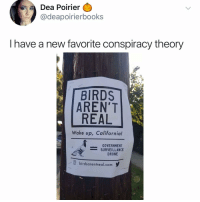 Drone, Memes, and School: Dea Poirier  @deapoirierbooks  I have a new favorite conspiracy theory  BIRDS  AREN'T  REAL  Wake up, California!  GOVERNMENT  -SURVEILLANCE  DRONE  /.O birdsarentreal.com y Post 1330: true story, this girl in my middle school was deathly afraid of birds and for some reason she went to the zoo to see their special bird exhibit with our class and I can still remember her screaming in fear the sound haunts me at night