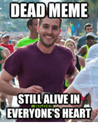 DEAD MEME  STILL ALIVE ON  EVERYONES HEART  quigk meme Ridiculously Photogenic Guy