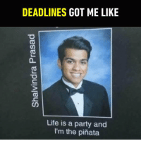 9gag, Dank, and Life: DEADLINES  GOT ME LIKE  Life is a party and  I'm the pinata Guess he's just a little SAD. https://9gag.com/gag/az8nMEq/sc/school?ref=fbsc