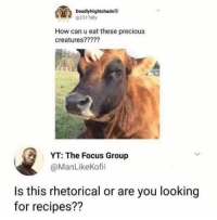 Meirl: DeadlyNightshade  @231Tally  How can u eat these precious  creatures?????  YT: The Focus Group  @ManLikeKofii  Is this rhetorical or are you looking  for recipes?? Meirl