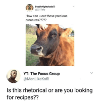 """Memes, Precious, and Focus: DeadlyNightshadeD  @231Tally  How can u eat these precious  creatures?????  YT: The Focus Group  @ManLikeKofii  Is this rhetorical or are you looking  for recipes?? <p>Medium rare for me. via /r/memes <a href=""""http://ift.tt/2iHgGMf"""">http://ift.tt/2iHgGMf</a></p>"""