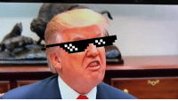 """""""Deal with it"""" Donald: """"Deal with it"""" Donald"""