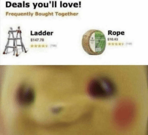 Not today: Deals you'll love!  Frequently Bought Together  Rope  $10.43  Ladder  $147.78  *006) Not today