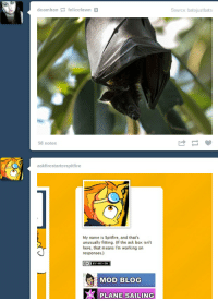 Bat Meets Pony.: deamhan-felicefawn  Source: batsjustbats  98 notes  askfirestarterspitfire  My name is Spitfire, and that's  unusually fitting. (If the ask box isn't  here, that means I'm working on  responses.)  MOD BLOG  PLANE SAILING Bat Meets Pony.