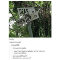 Lol kill me . . . Supernatural deanwinchester samwinchester jaredpadalecki jensenackles destiel castiel mishacollins hellismybitch: DEAN  13  inensis:  angeldreamsspn:  milena2052:  xthrough-the-dark:  saw this while driving today. you're  welcome  supernatural fans.  A crossroad? Really?  Could this be more ironic? Lol kill me . . . Supernatural deanwinchester samwinchester jaredpadalecki jensenackles destiel castiel mishacollins hellismybitch