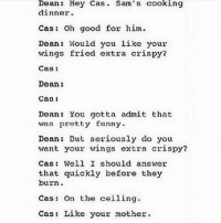 ROASTED (pun intended): Dean  Hey Cas Sam's cooking  dinner.  Cas Oh good for him.  Dean: Would you like your  wings fried extra crispy?  Cas  Dean  CaD 1  Dean: You gotta admit that  was pretty funny.  Dean: But seriously do you  want your wings extra crispy?  Cas: Well I should answer  that quickly before they  burn.  Cats On the ceiling  Cas Like your mother. ROASTED (pun intended)