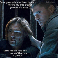 I'm bored and in science. Someone talk to me.: Dean: you made a terrible mistake  hurting my little brother  you son of a bitch!  Sam: Dean is here now  you can't hurt me  anymore.  ds. brothers I'm bored and in science. Someone talk to me.
