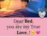 Love, Memes, and True: Dear Bed,  you are my True  Love..!
