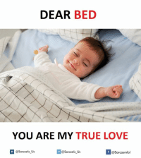 Dears, True Love, and Beds: DEAR  BED  YOU ARE MY TRUE LOVE  If @sarcastic Us  @Sarcastic Us  @Sarcasmlol