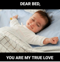 Memes, 🤖, and Soulmate: DEAR BED  YOU ARE MY TRUE LOVE Tag friends Check out all of my prior posts⤵🔝 Positiveresult positive positivequotes positivity life motivation motivational love lovequotes relationship lover hug heart quotes positivequote positivevibes kiss king soulmate girl boy friendship dream adore inspire inspiration couplegoals