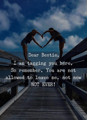 Remember, You, and Now: Dear Bestie,  I am tagging you, here,  So remember, You are not  allowed to leave me, not now  NOT EVER! C/o theidealist