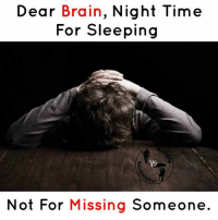Memes, Brain, and Time: Dear Brain, Night Time  For Sleeping  Not For Missing Someone.