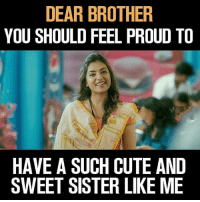 Cute, Memes, and Proud: DEAR BROTHER  YOU SHOULD FEEL PROUD TO  HAVE A SUCH CUTE AND  SWEET SISTER LIKE ME